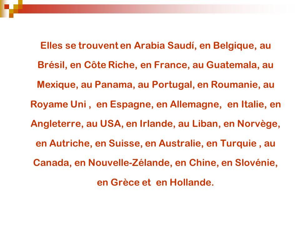Les Boutiques de Rosa Clara; Elles se trouvent en Arabia Saudí, en Belgique, au Brésil, en Côte Riche, en France, au Guatemala, au Mexique, au Panama,