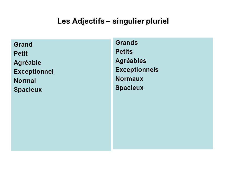 Les Adjectifs – singulier pluriel Grand Petit Agréable Exceptionnel Normal Spacieux Grands Petits Agréables Exceptionnels Normaux Spacieux