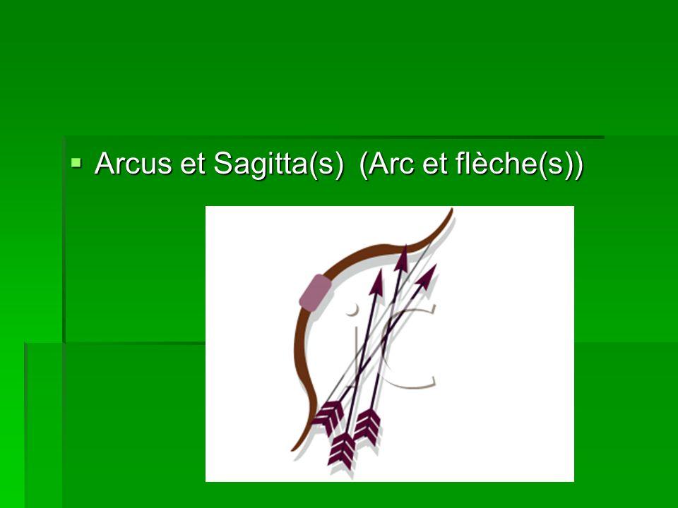 Arcus et Sagitta(s) (Arc et flèche(s)) Arcus et Sagitta(s) (Arc et flèche(s))