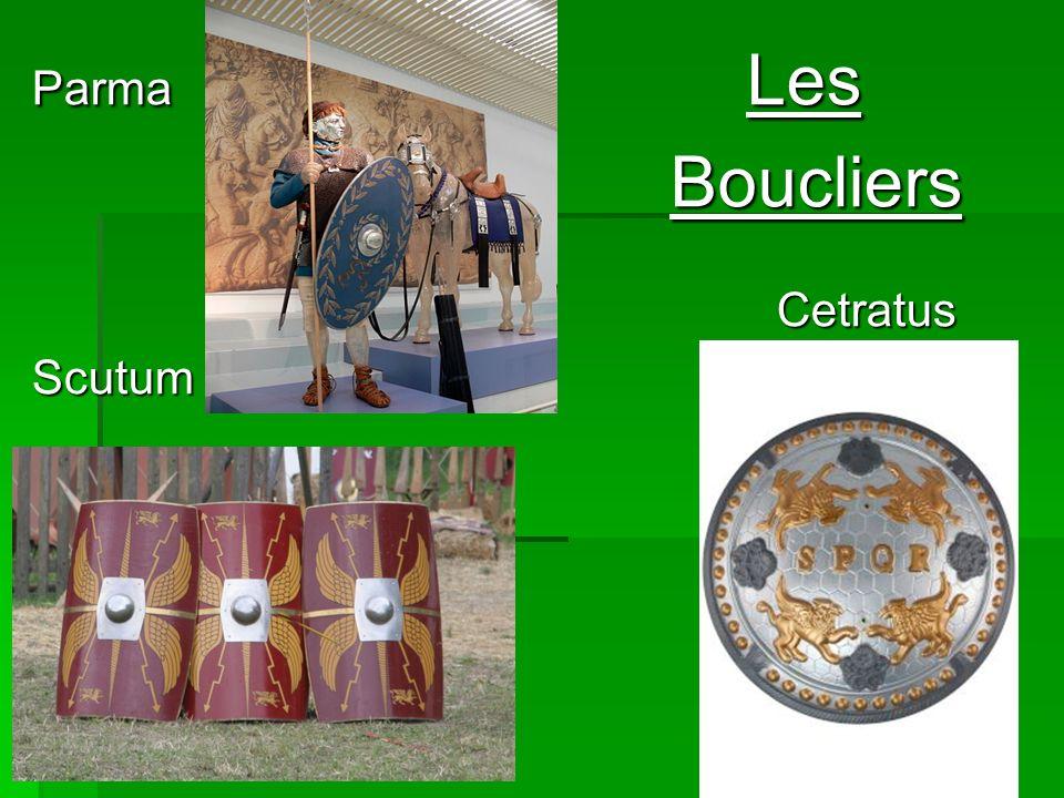 Parma Les Boucliers Cetratus Scutum