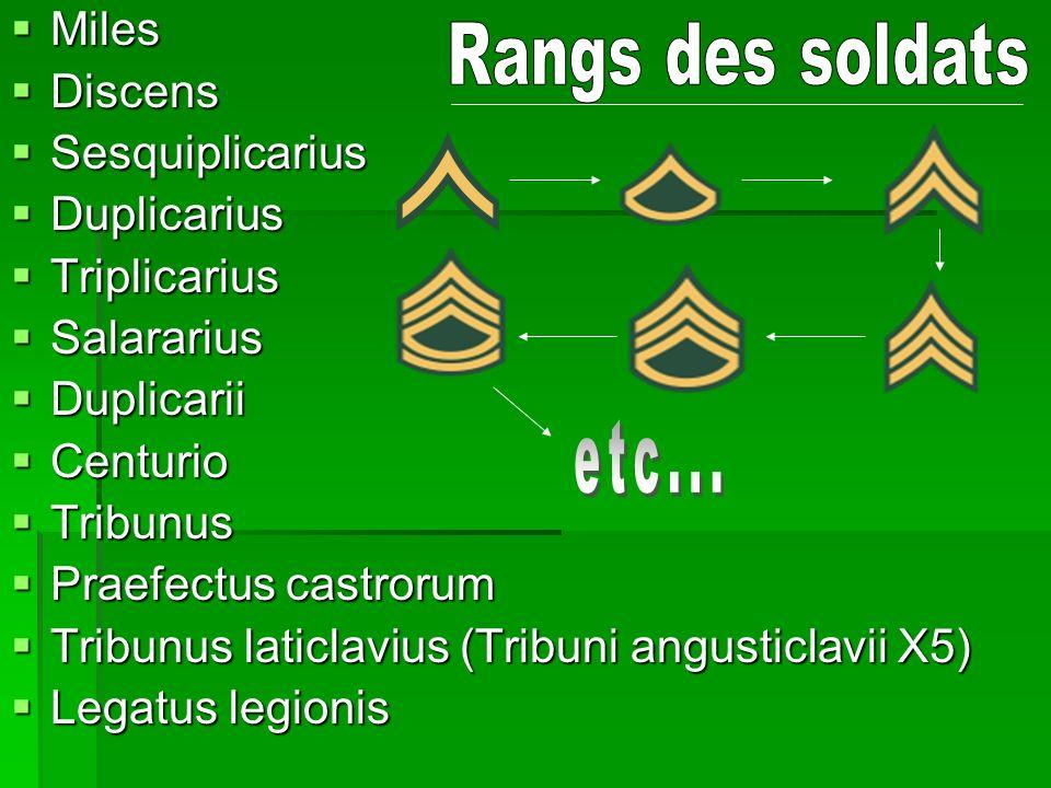 Discipline des soldats Majeur Fustuarium Fustuarium Exécution (Rare) Exécution (Rare) Dissolution (Rare) Dissolution (Rare) Décimation (Vraiment Rare) Décimation (Vraiment Rare)
