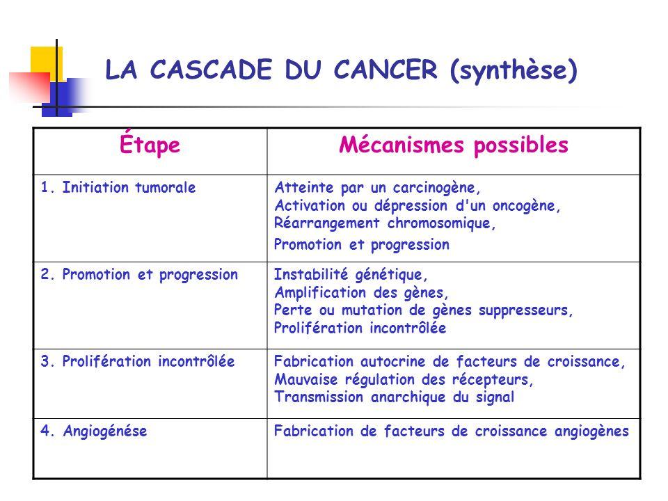 LA CASCADE DU CANCER (synthèse) ÉtapeMécanismes possibles 1. Initiation tumoraleAtteinte par un carcinogène, Activation ou dépression d'un oncogène, R