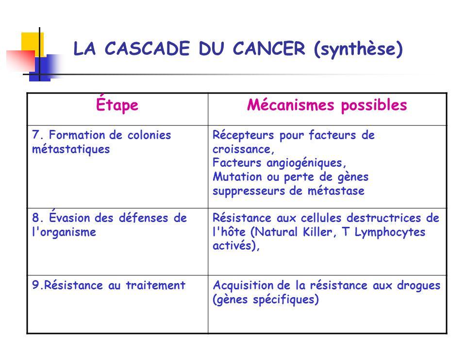 LA CASCADE DU CANCER (synthèse) ÉtapeMécanismes possibles 7. Formation de colonies métastatiques Récepteurs pour facteurs de croissance, Facteurs angi