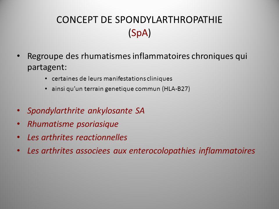 CONCEPT DE SPONDYLARTHROPATHIE (SpA) Regroupe des rhumatismes inflammatoires chroniques qui partagent: certaines de leurs manifestations cliniques ain