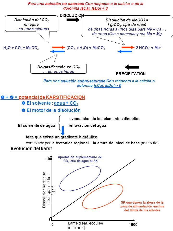 DISOLUCION PRECIPITATION H 2 O + CO 2 + MeCO 3 (CO 2, nH 2 O) + MeCO 3 2 HCO 3 - + Me 2+ + = potencial de KARSTIFICACION El motor de la disolución El