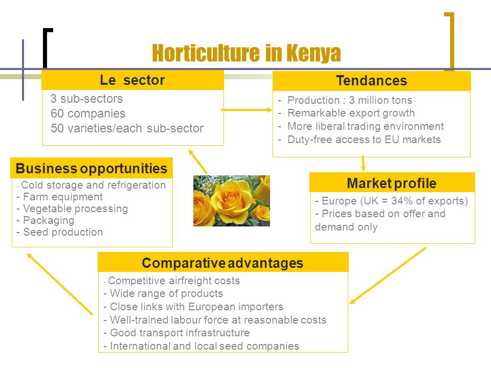 Horticulture in Kenya Le sector Business opportunities Market profile 3 sub-sectors 60 companies 50 varieties/each sub-sector - Cold storage and refrigeration - Farm equipment - Vegetable processing - Packaging - Seed production - Europe (UK = 34% of exports) - Prices based on offer and demand only Tendances - Production : 3 million tons - Remarkable export growth - More liberal trading environment - Duty-free access to EU markets - Competitive airfreight costs - Wide range of products - Close links with European importers - Well-trained labour force at reasonable costs - Good transport infrastructure - International and local seed companies Comparative advantages