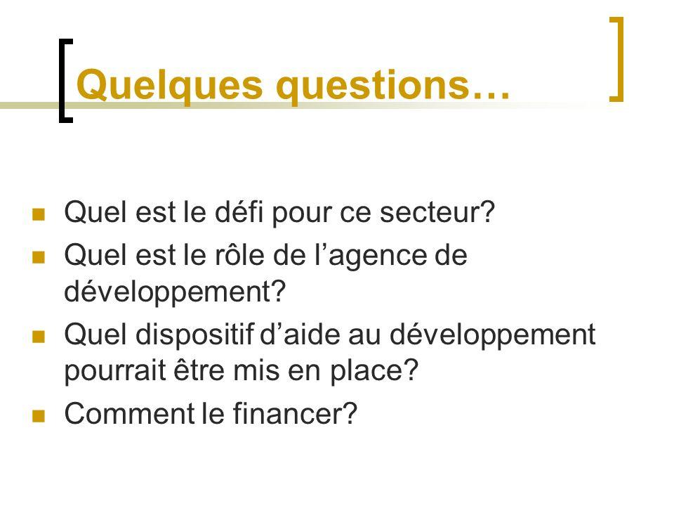 Quelques questions… Quel est le défi pour ce secteur? Quel est le rôle de lagence de développement? Quel dispositif daide au développement pourrait êt