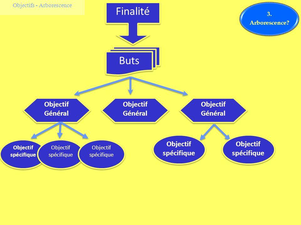 Objectifs - Arborescence Finalité Buts Objectif Général Objectif spécifique 3. Arborescence?