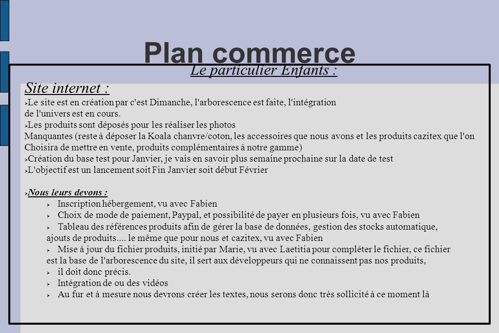 Plan commerce Le particulier Enfants : Site internet : Le site est en création par c'est Dimanche, l'arborescence est faite, l'intégration de l'univer