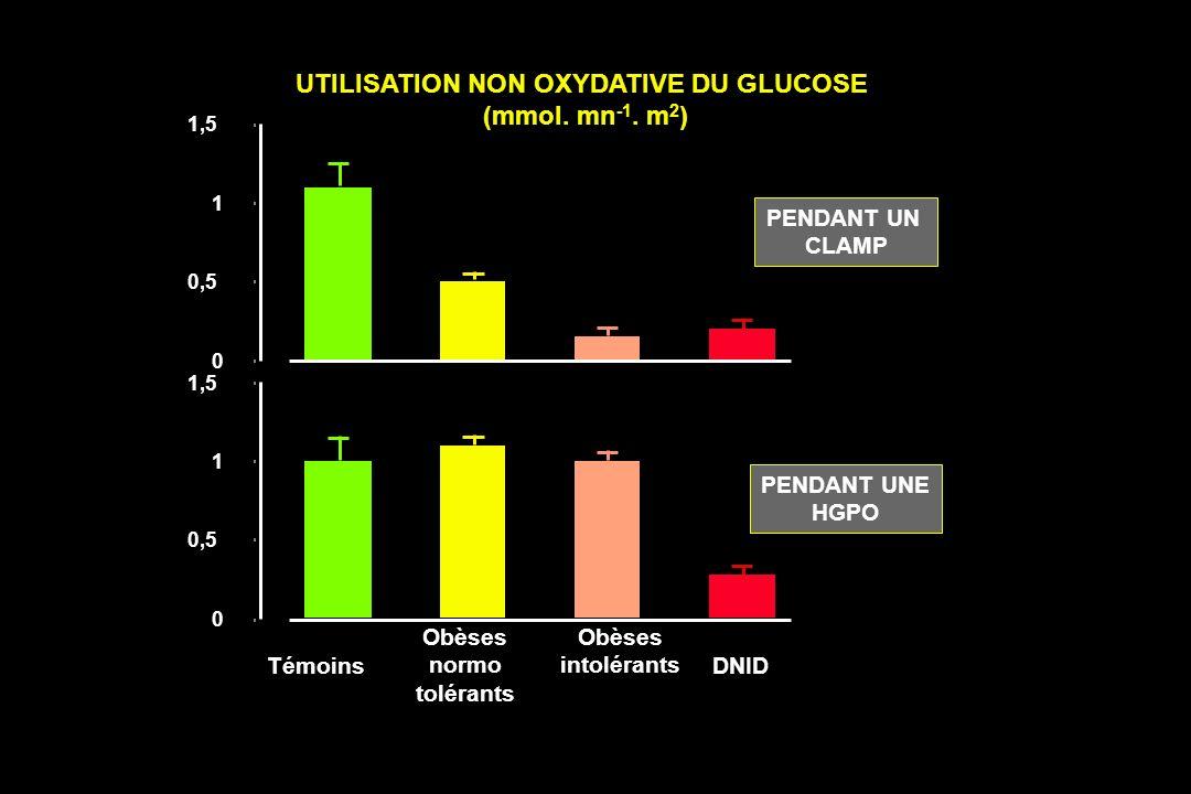 Témoins Obèses normo tolérants Obèses intolérants DNID PENDANT UNE HGPO PENDANT UN CLAMP UTILISATION NON OXYDATIVE DU GLUCOSE (mmol. mn -1. m 2 ) 0 0,