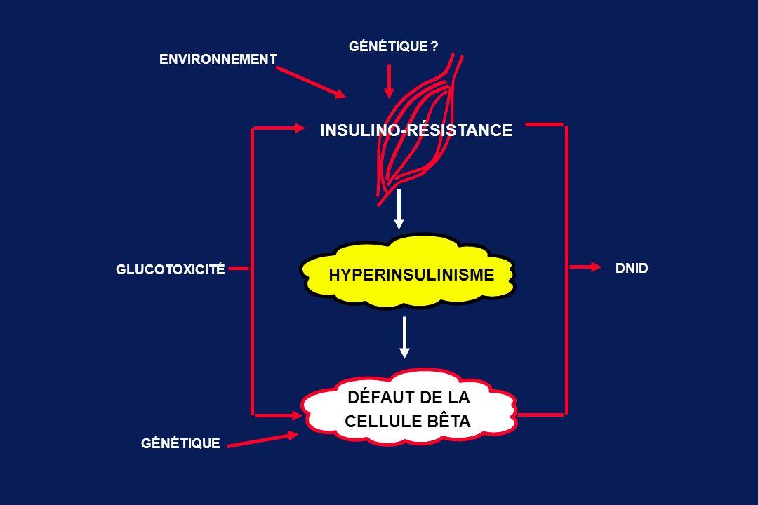 HYPERINSULINISME DÉFAUT DE LA CELLULE BÊTA GLUCOTOXICITÉ GÉNÉTIQUE DNID GÉNÉTIQUE ? ENVIRONNEMENT INSULINO-RÉSISTANCE