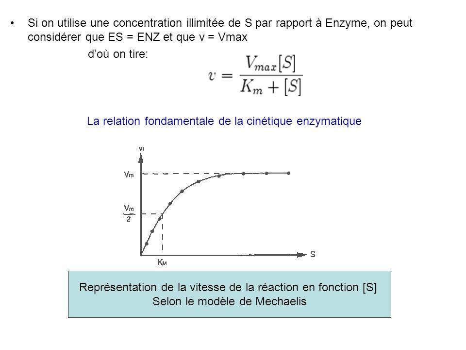 Si on utilise une concentration illimitée de S par rapport à Enzyme, on peut considérer que ES = ENZ et que v = Vmax doù on tire: La relation fondamen