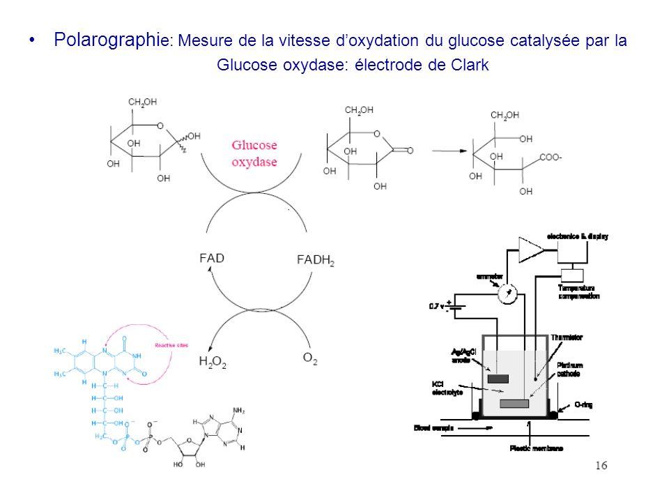 Polarographi e: Mesure de la vitesse doxydation du glucose catalysée par la Glucose oxydase: électrode de Clark