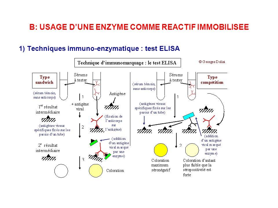 B: USAGE DUNE ENZYME COMME REACTIF IMMOBILISEE 1) Techniques immuno-enzymatique : test ELISA