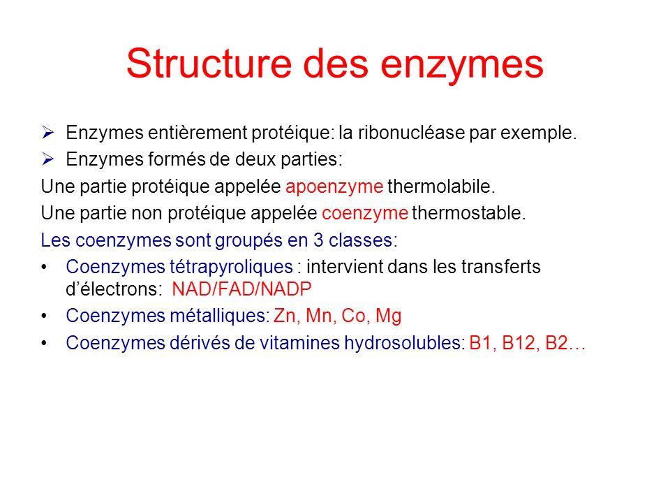 Structure des enzymes Enzymes entièrement protéique: la ribonucléase par exemple. Enzymes formés de deux parties: Une partie protéique appelée apoenzy