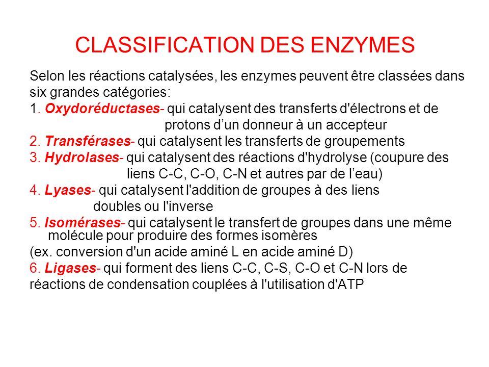 CLASSIFICATION DES ENZYMES Selon les réactions catalysées, les enzymes peuvent être classées dans six grandes catégories: 1. Oxydoréductases- qui cata