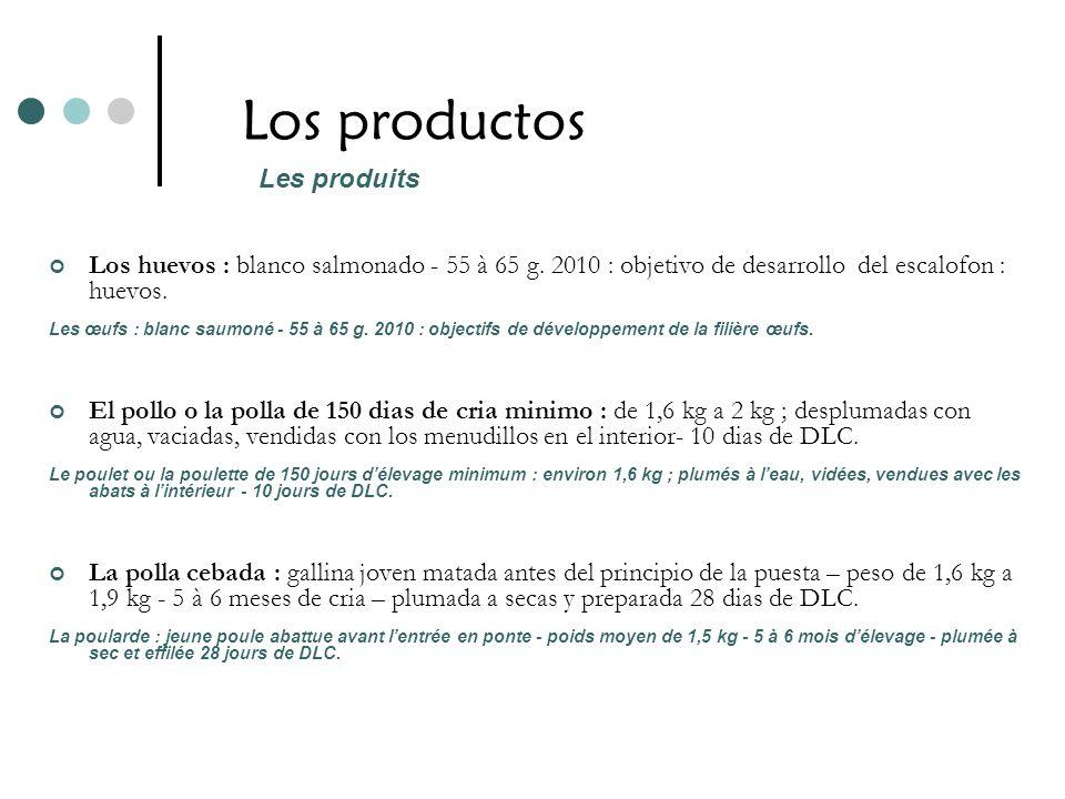 Los productos Los huevos : blanco salmonado - 55 à 65 g. 2010 : objetivo de desarrollo del escalofon : huevos. Les œufs : blanc saumoné - 55 à 65 g. 2