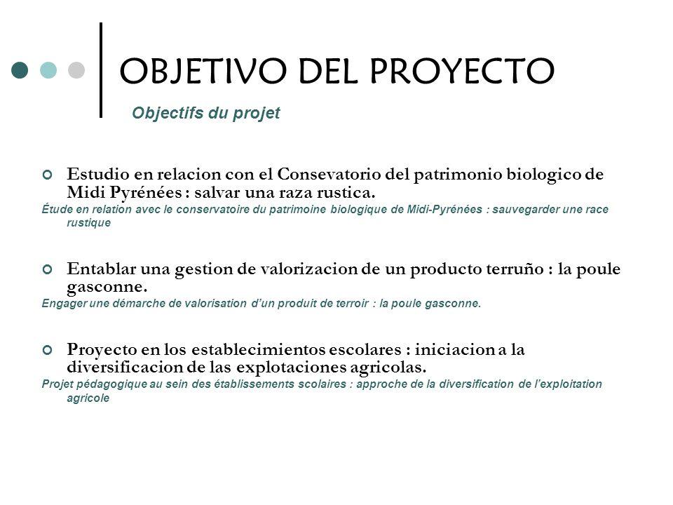 OBJETIVO DEL PROYECTO Estudio en relacion con el Consevatorio del patrimonio biologico de Midi Pyrénées : salvar una raza rustica. Étude en relation a