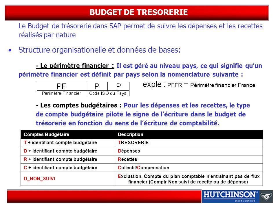BUDGET DE TRESORERIE Le Budget de trésorerie dans SAP permet de suivre les dépenses et les recettes réalisés par nature Structure organisationelle et