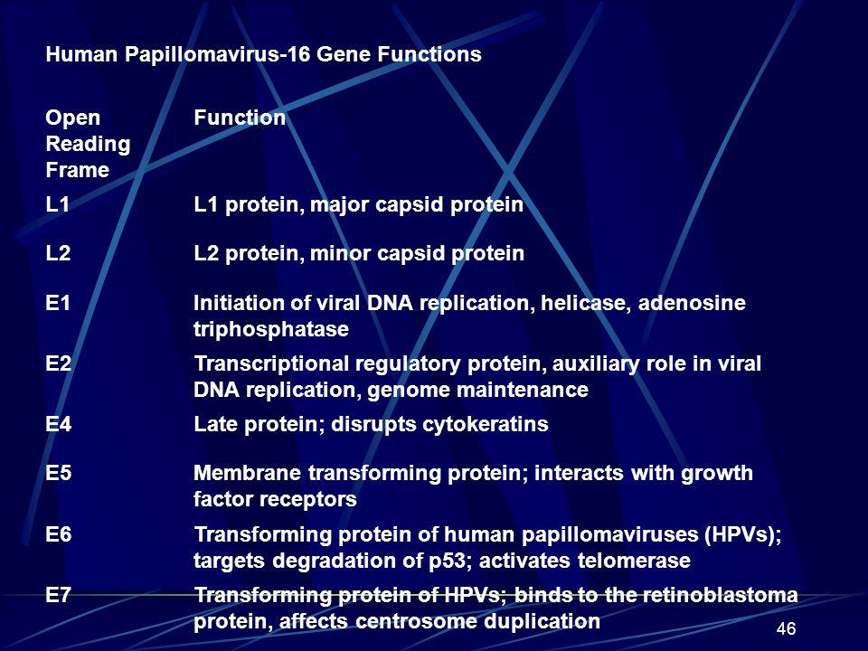 47 FACTEURS ENDOGENE.1.facteurs genetiques.