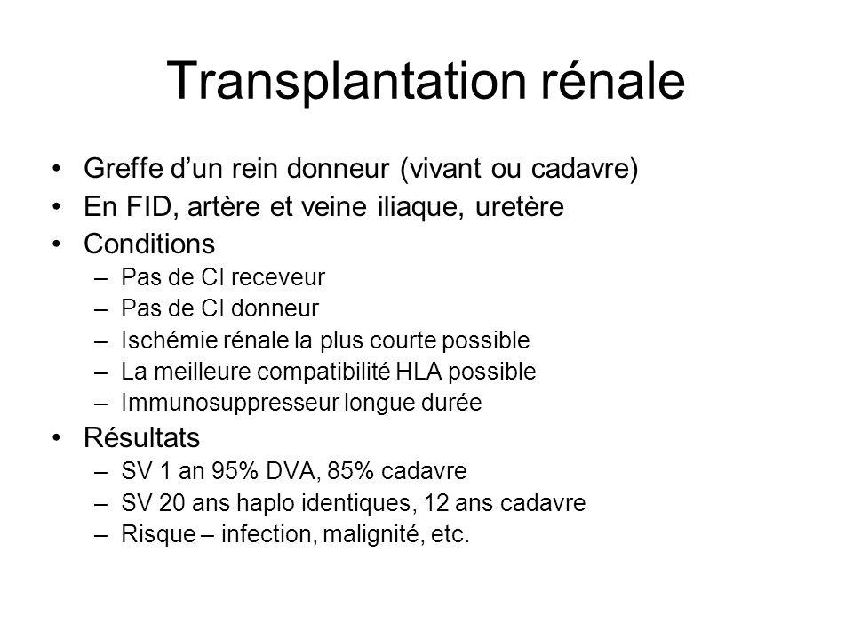 Transplantation rénale Greffe dun rein donneur (vivant ou cadavre) En FID, artère et veine iliaque, uretère Conditions –Pas de CI receveur –Pas de CI