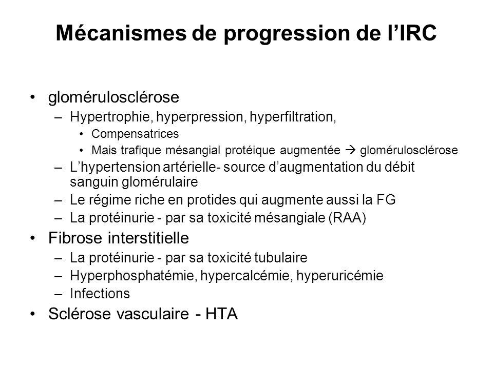 Mécanismes de progression de lIRC glomérulosclérose –Hypertrophie, hyperpression, hyperfiltration, Compensatrices Mais trafique mésangial protéique au