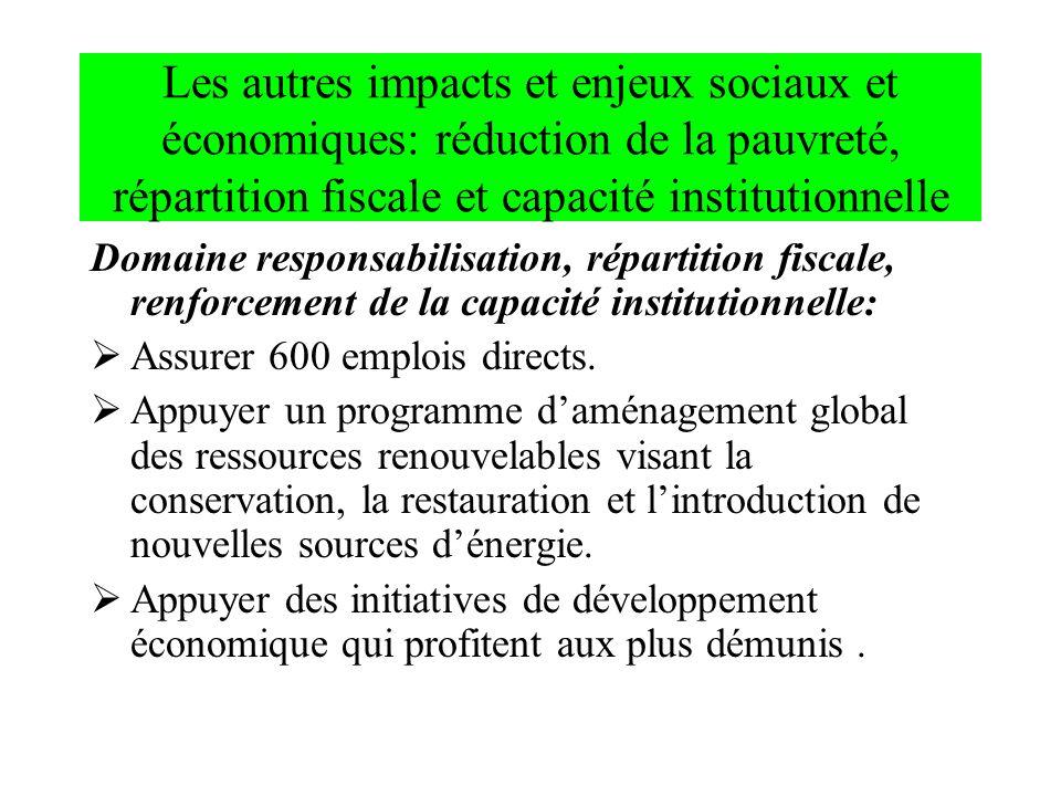 Les autres impacts et enjeux sociaux et économiques: réduction de la pauvreté, répartition fiscale et capacité institutionnelle Domaine responsabilisa