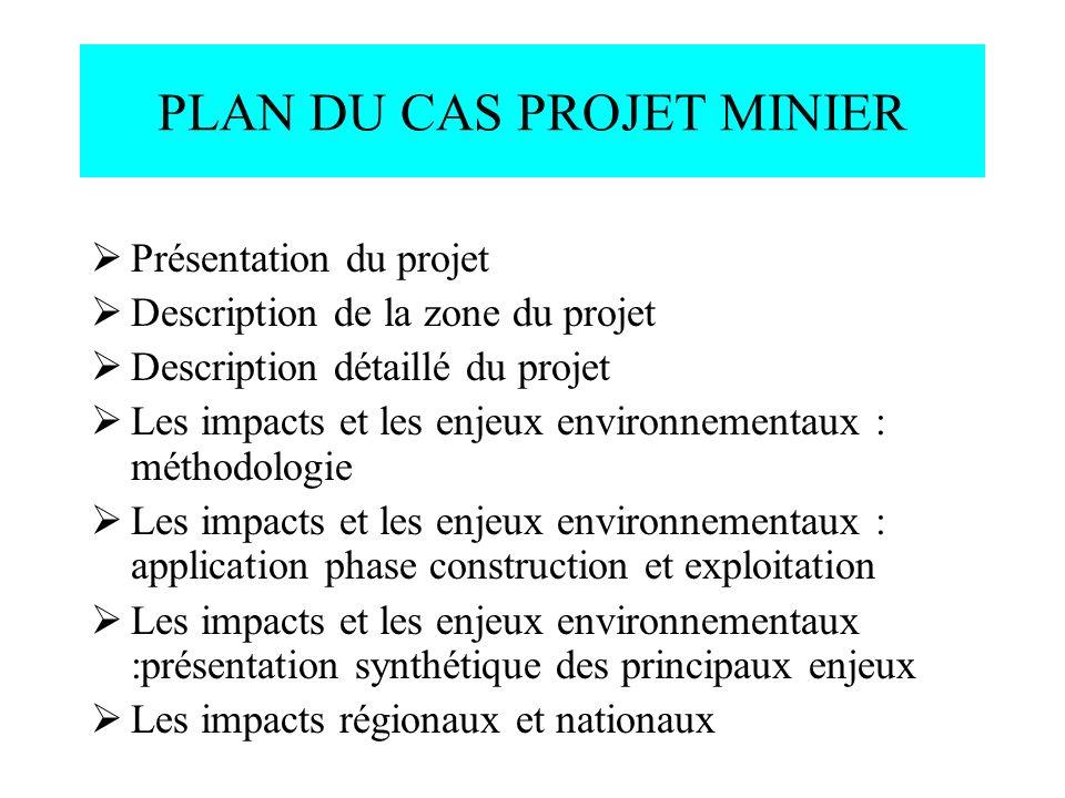 PLAN DU CAS PROJET MINIER Présentation du projet Description de la zone du projet Description détaillé du projet Les impacts et les enjeux environneme