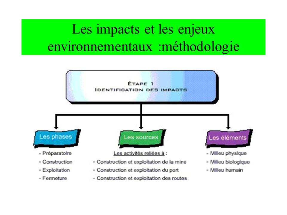 Les impacts et les enjeux environnementaux :méthodologie