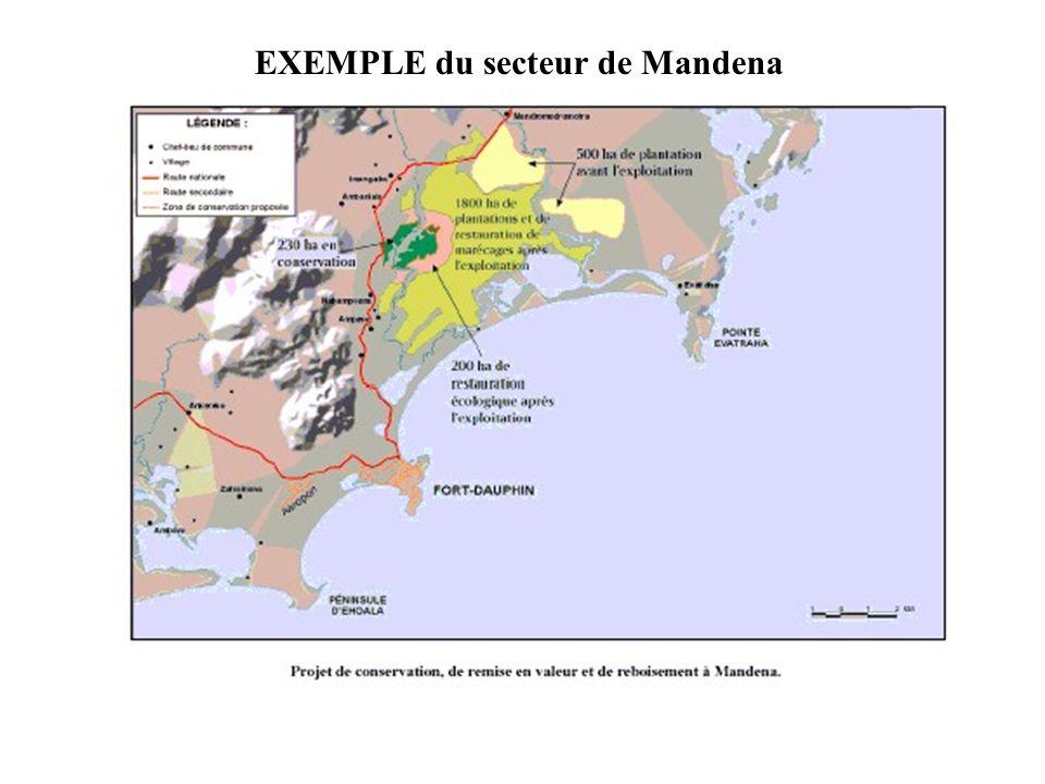EXEMPLE du secteur de Mandena