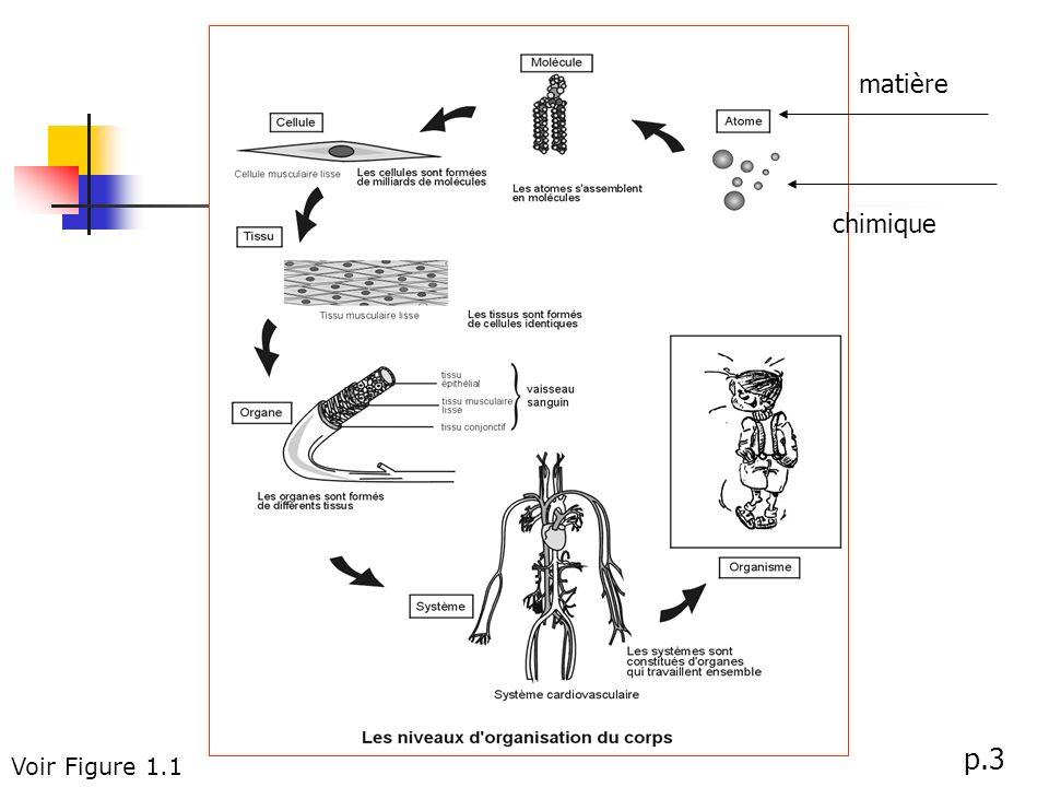 Voir Figure 1.1 p.3 matière chimique