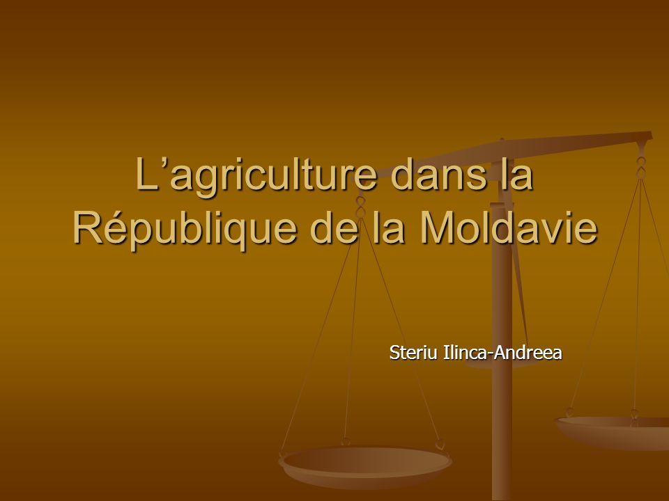 Lagriculture dans la République de la Moldavie Steriu Ilinca-Andreea