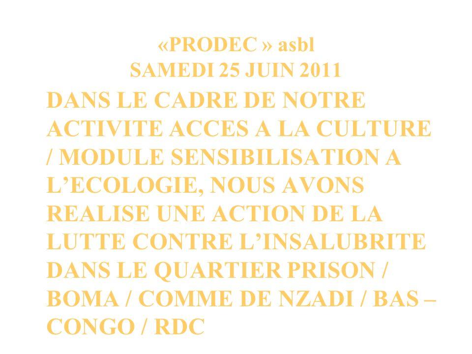 «PRODEC » asbl SAMEDI 25 JUIN 2011 DANS LE CADRE DE NOTRE ACTIVITE ACCES A LA CULTURE / MODULE SENSIBILISATION A LECOLOGIE, NOUS AVONS REALISE UNE ACTION DE LA LUTTE CONTRE LINSALUBRITE DANS LE QUARTIER PRISON / BOMA / COMME DE NZADI / BAS – CONGO / RDC