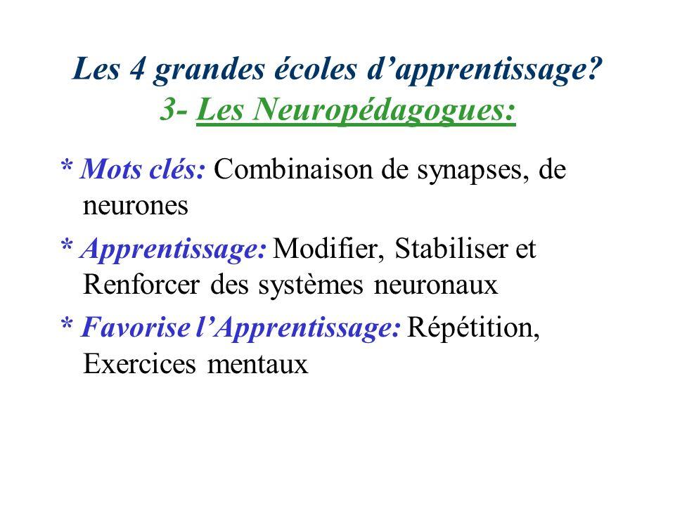 Les 4 grandes écoles dapprentissage? 3- Les Neuropédagogues: * Mots clés: Combinaison de synapses, de neurones * Apprentissage: Modifier, Stabiliser e