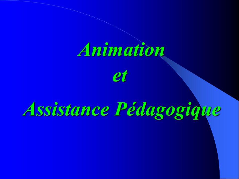 Animation et assistance pédagogique Développement de services pédagogiques Le perfectionnement pédagogique des enseignants La recherche en pédagogie m