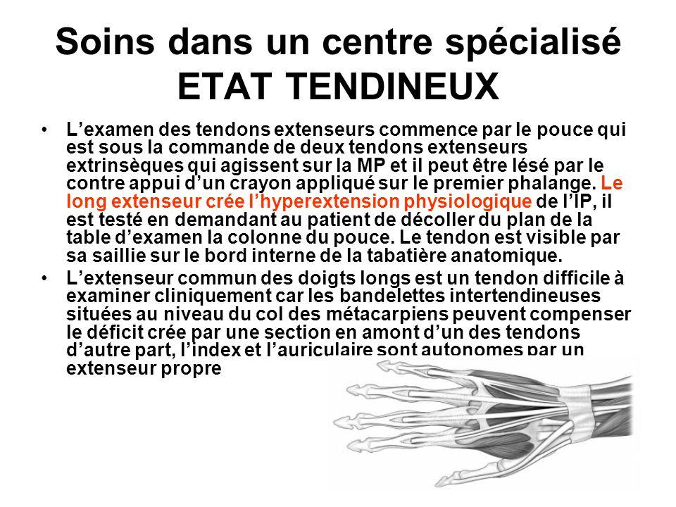 Soins dans un centre spécialisé ETAT TENDINEUX Lexamen des tendons extenseurs commence par le pouce qui est sous la commande de deux tendons extenseur