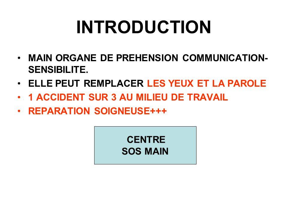 INTRODUCTION MAIN ORGANE DE PREHENSION COMMUNICATION- SENSIBILITE. ELLE PEUT REMPLACER LES YEUX ET LA PAROLE 1 ACCIDENT SUR 3 AU MILIEU DE TRAVAIL REP