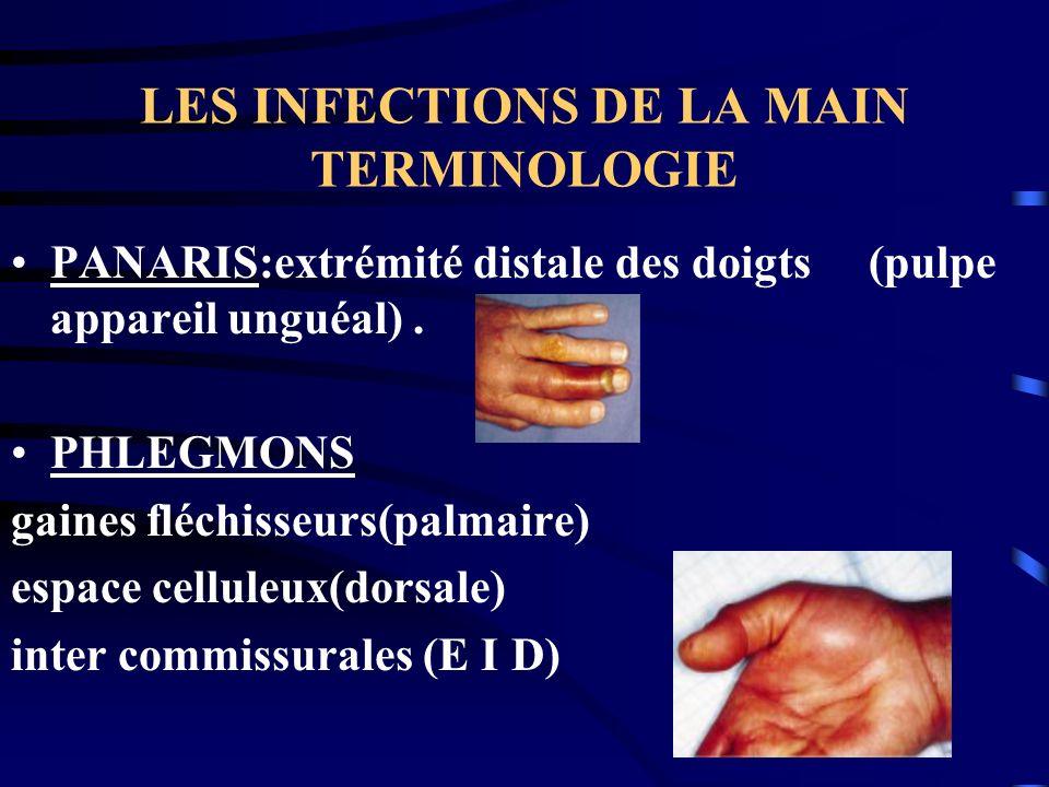 LES INFECTIONS DE LA MAIN TERMINOLOGIE PANARIS:extrémité distale des doigts (pulpe appareil unguéal). PHLEGMONS gaines fléchisseurs(palmaire) espace c