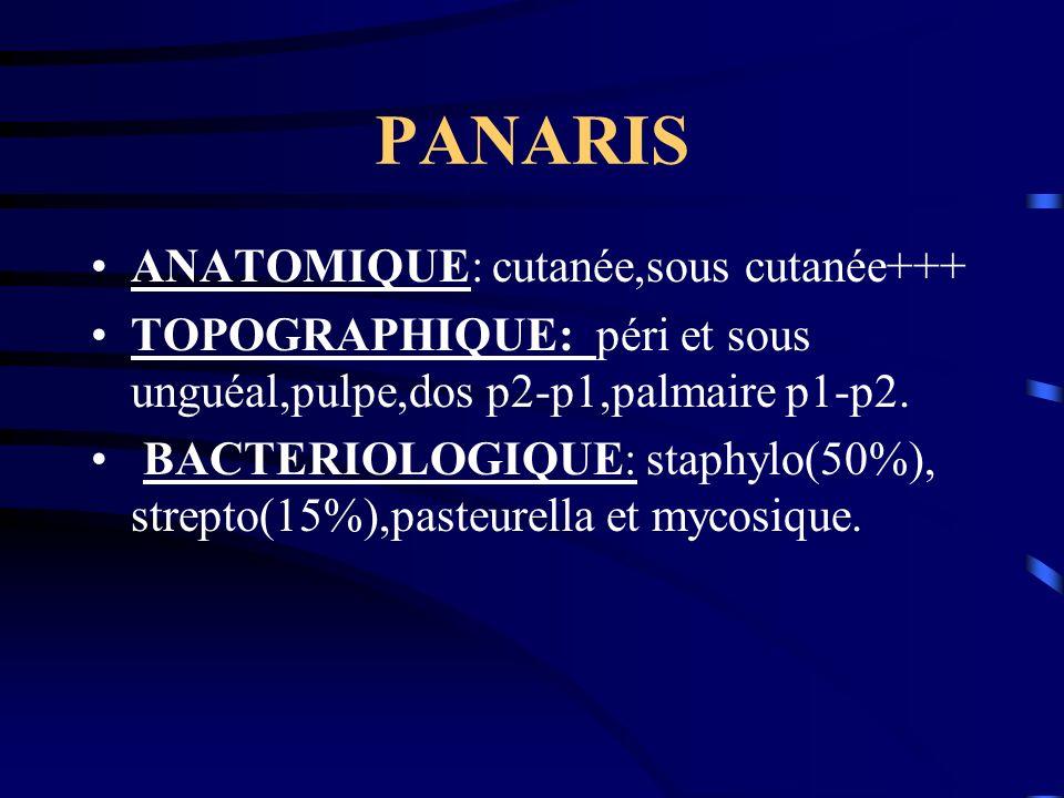 PANARIS ANATOMIQUE: cutanée,sous cutanée+++ TOPOGRAPHIQUE: péri et sous unguéal,pulpe,dos p2-p1,palmaire p1-p2. BACTERIOLOGIQUE: staphylo(50%), strept