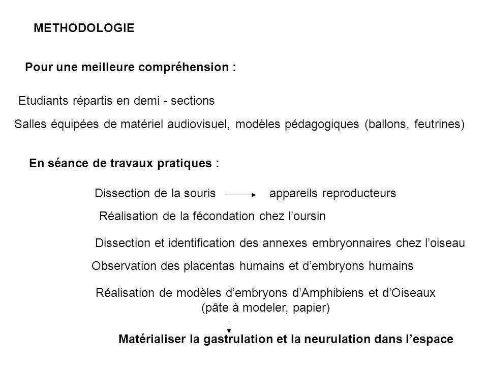 Utilisation de CD Rom pour révision Observation de modèles dembryons Projection de films suivis de débats Observation de la réalisation de la fécondation chez loursin - dans lespace - en coupes à différents stades