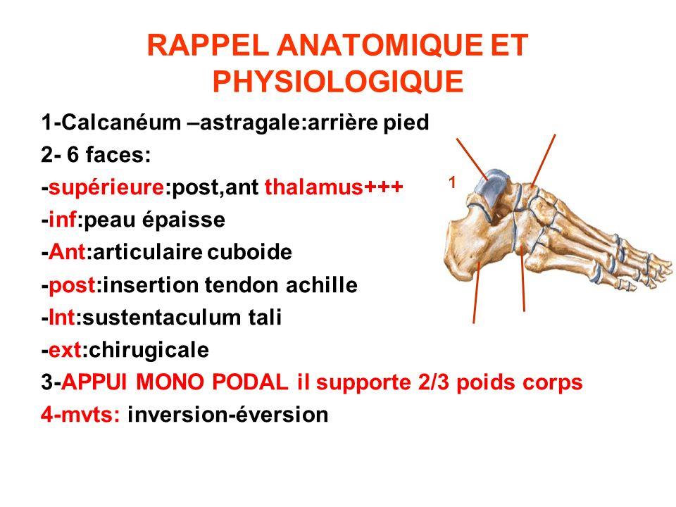 RAPPEL ANATOMIQUE ET PHYSIOLOGIQUE 1-Calcanéum –astragale:arrière pied 2- 6 faces: -supérieure:post,ant thalamus+++ -inf:peau épaisse -Ant:articulaire
