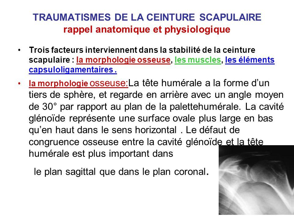 TRAUMATISMES DE LA CEINTURE SCAPULAIRE rappel anatomique et physiologique Trois facteurs interviennent dans la stabilité de la ceinture scapulaire : l