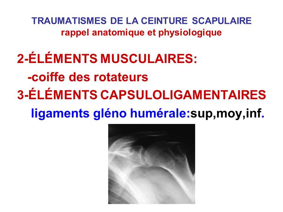 TRAUMATISMES DE LA CEINTURE SCAPULAIRE rappel anatomique et physiologique 2-ÉLÉMENTS MUSCULAIRES: -coiffe des rotateurs 3-ÉLÉMENTS CAPSULOLIGAMENTAIRE