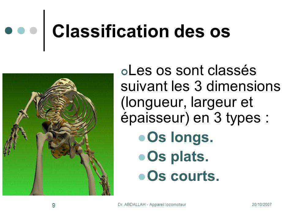 20/10/2007Dr. ABDALLAH - Appareil locomoteur 9 Classification des os Les os sont classés suivant les 3 dimensions (longueur, largeur et épaisseur) en