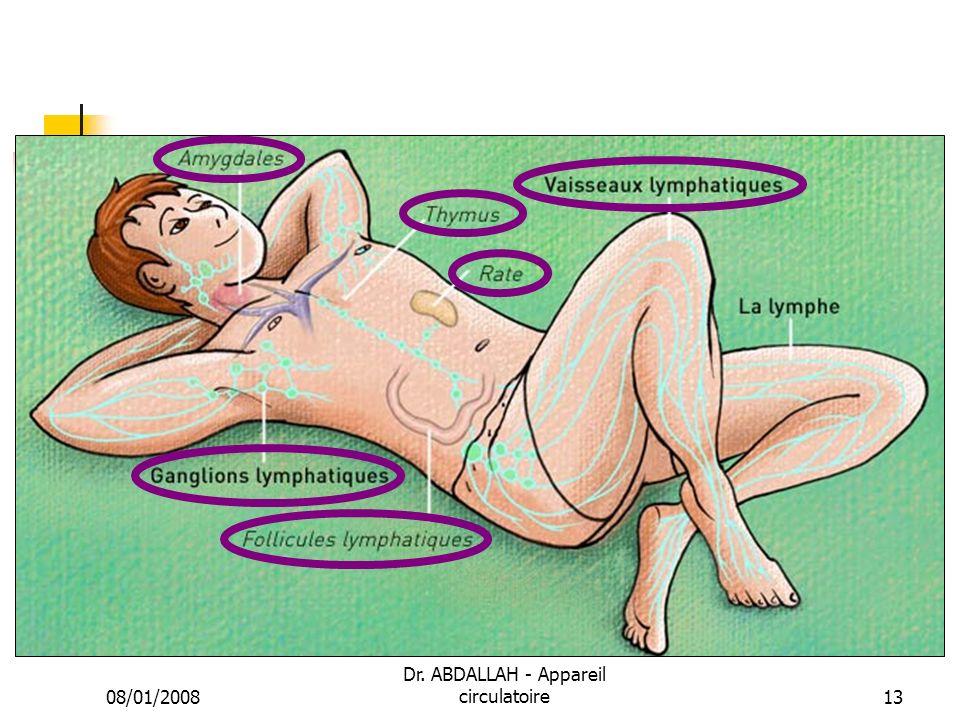 08/01/2008 Dr. ABDALLAH - Appareil circulatoire13