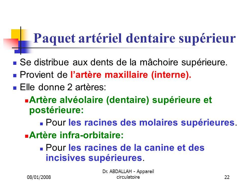 08/01/2008 Dr. ABDALLAH - Appareil circulatoire22 Paquet artériel dentaire supérieur Se distribue aux dents de la mâchoire supérieure. Provient de lar