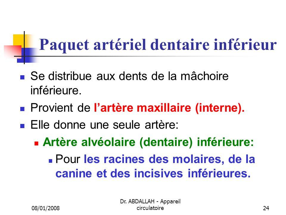 08/01/2008 Dr. ABDALLAH - Appareil circulatoire24 Paquet artériel dentaire inférieur Se distribue aux dents de la mâchoire inférieure. Provient de lar