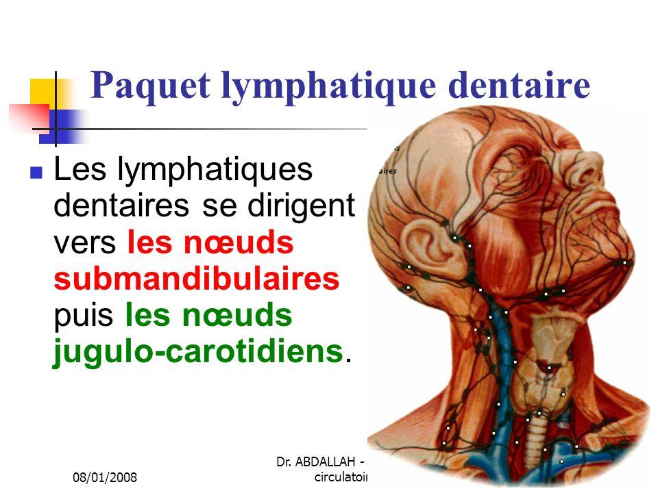 08/01/2008 Dr. ABDALLAH - Appareil circulatoire31 Paquet lymphatique dentaire Les lymphatiques dentaires se dirigent vers les nœuds submandibulaires p