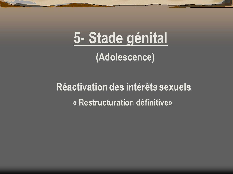 5- Stade génital (Adolescence) Réactivation des intérêts sexuels « Restructuration définitive»