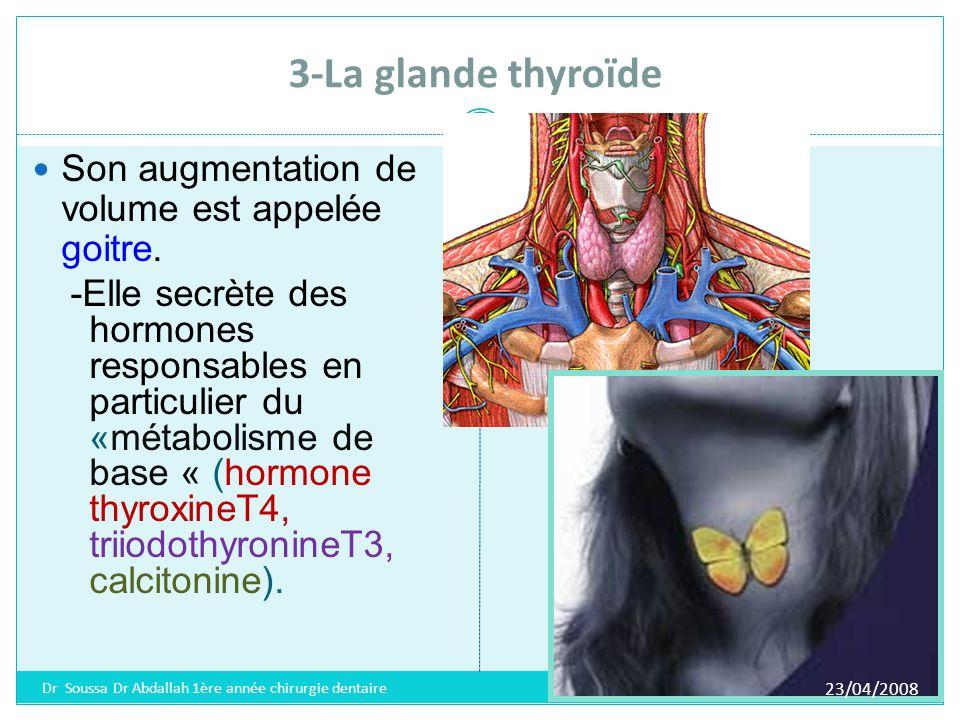 Rôle des hormones thyroïdiennes Régulation du métabolisme.